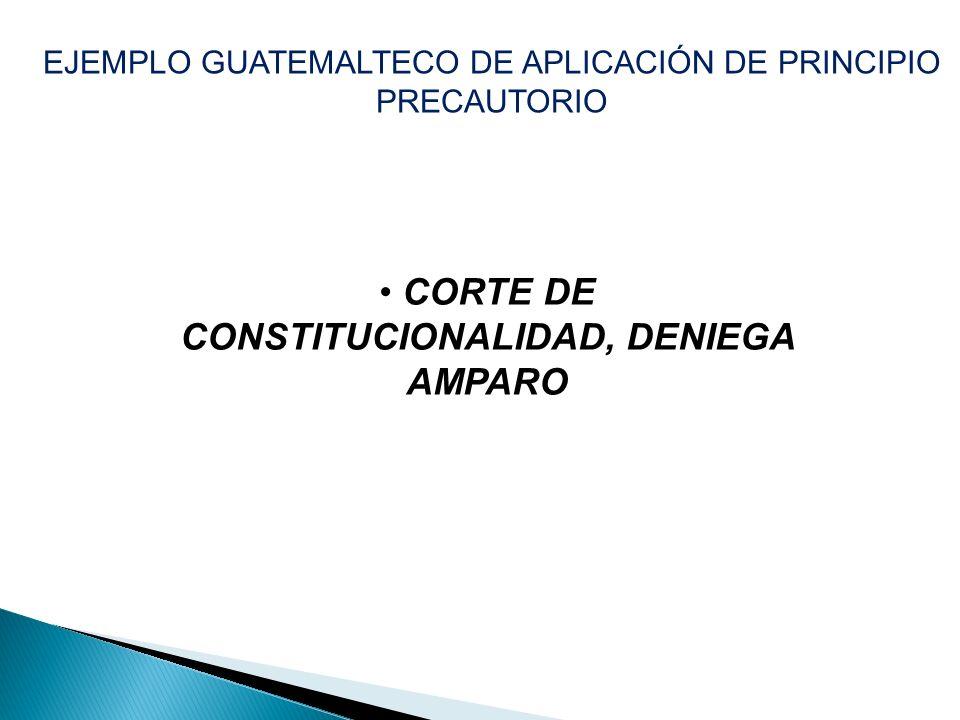 CORTE DE CONSTITUCIONALIDAD, DENIEGA AMPARO