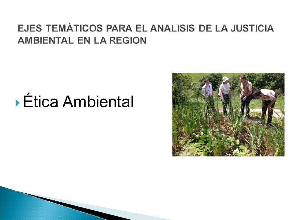 EJES TEMÀTICOS PARA EL ANALISIS DE LA JUSTICIA AMBIENTAL EN LA REGION