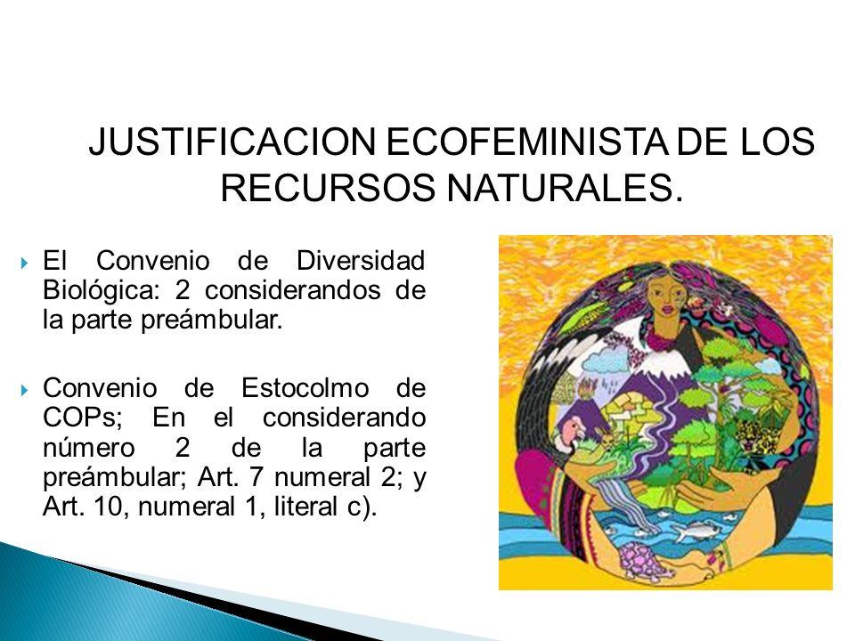 JUSTIFICACION ECOFEMINISTA DE LOS RECURSOS NATURALES.