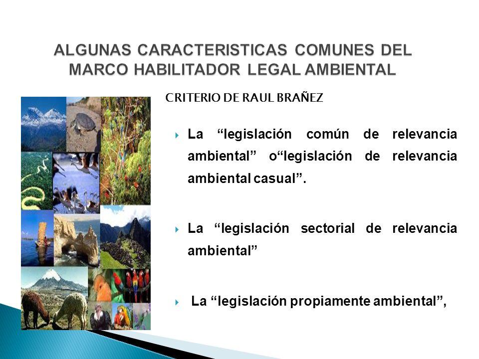 ALGUNAS CARACTERISTICAS COMUNES DEL MARCO HABILITADOR LEGAL AMBIENTAL