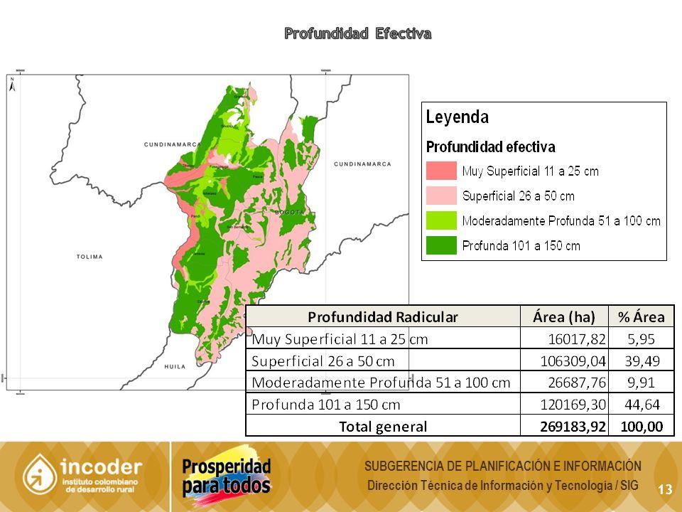 Profundidad Efectiva SUBGERENCIA DE PLANIFICACIÓN E INFORMACIÓN