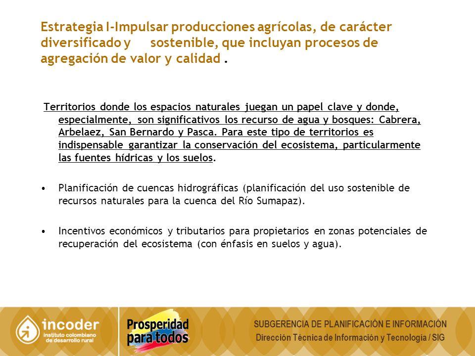 Estrategia I-Impulsar producciones agrícolas, de carácter diversificado y sostenible, que incluyan procesos de agregación de valor y calidad .