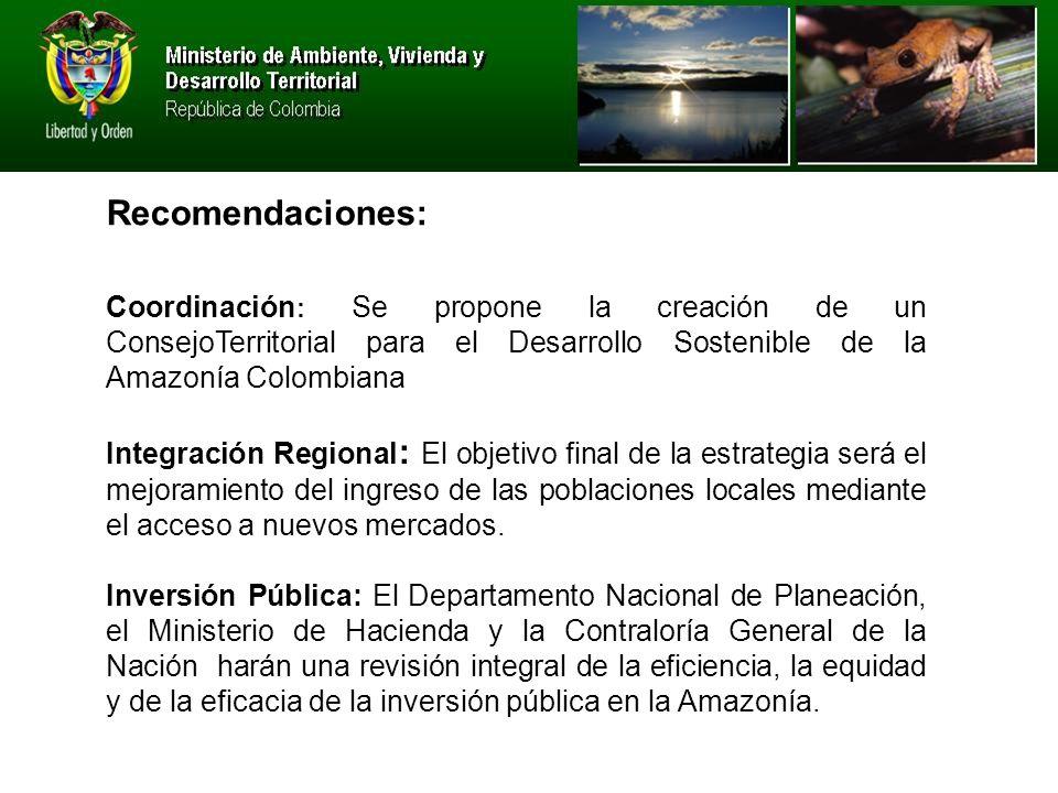 Recomendaciones: Coordinación: Se propone la creación de un ConsejoTerritorial para el Desarrollo Sostenible de la Amazonía Colombiana.