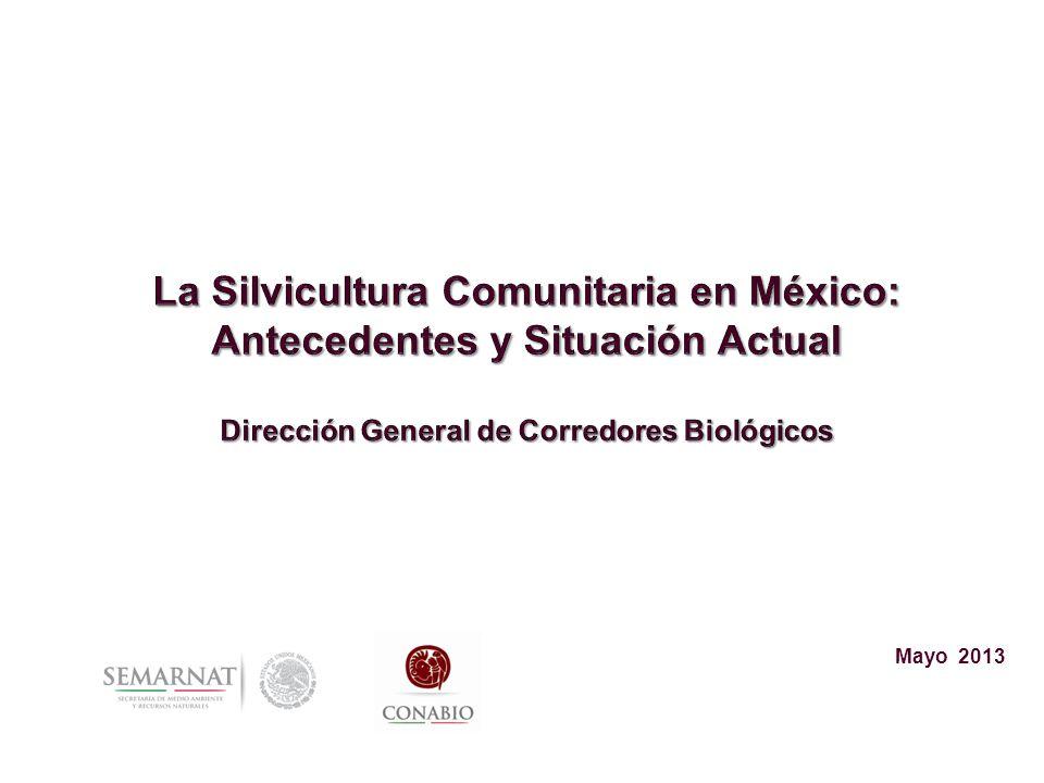 La Silvicultura Comunitaria en México: Antecedentes y Situación Actual