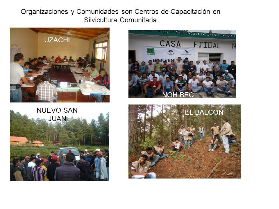 Organizaciones y Comunidades son Centros de Capacitación en Silvicultura Comunitaria