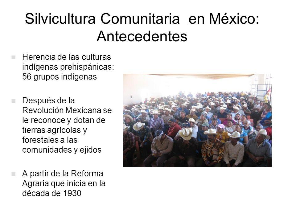 Silvicultura Comunitaria en México: Antecedentes