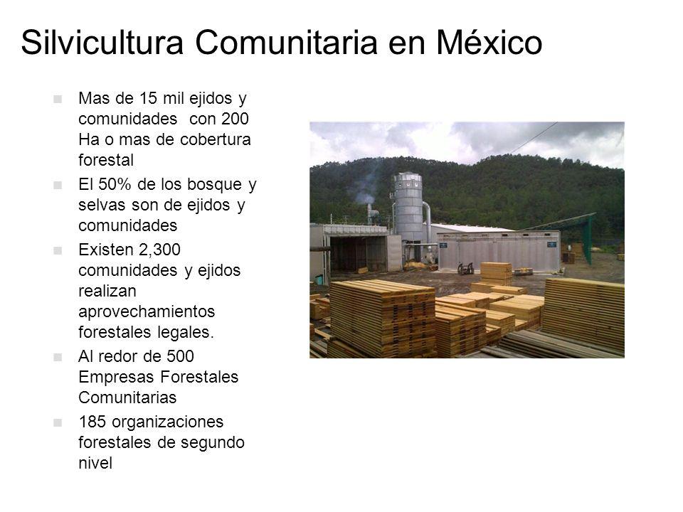 Silvicultura Comunitaria en México