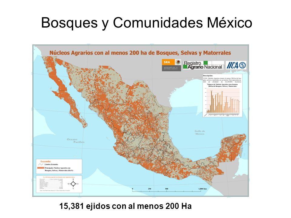 Bosques y Comunidades México