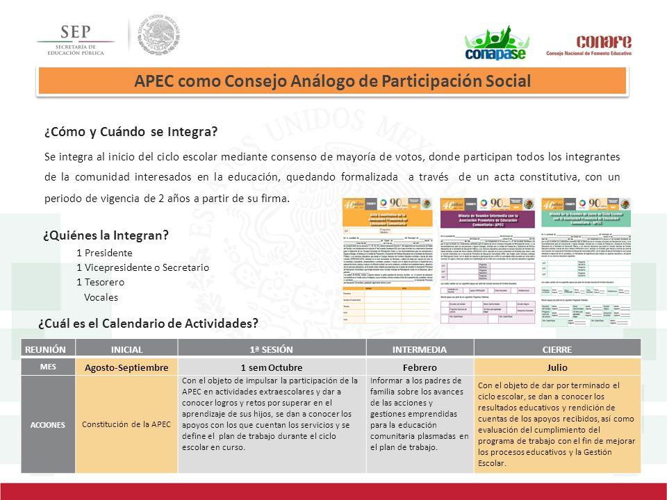 APEC como Consejo Análogo de Participación Social
