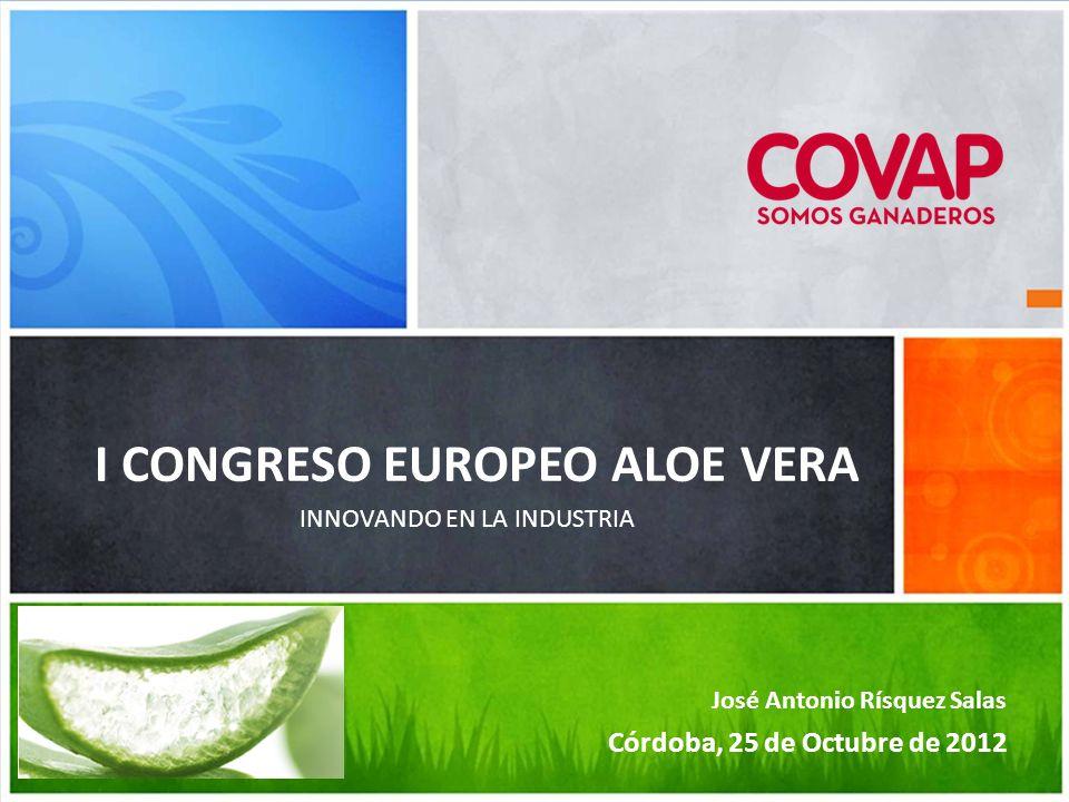 Comité de Dirección 09 febrero 2012