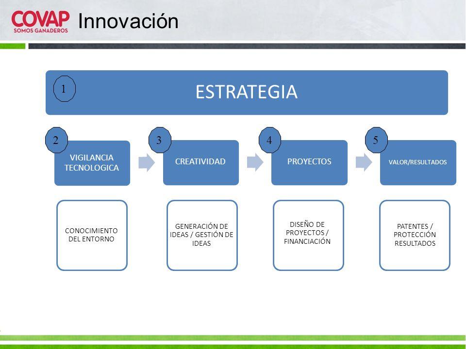 Innovación ESTRATEGIA 1 2 3 4 5 VIGILANCIA TECNOLOGICA CREATIVIDAD