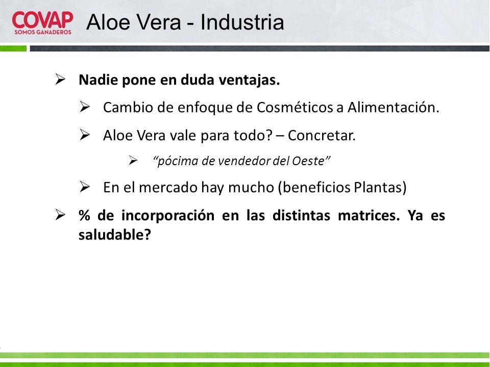 Aloe Vera - Industria Nadie pone en duda ventajas.