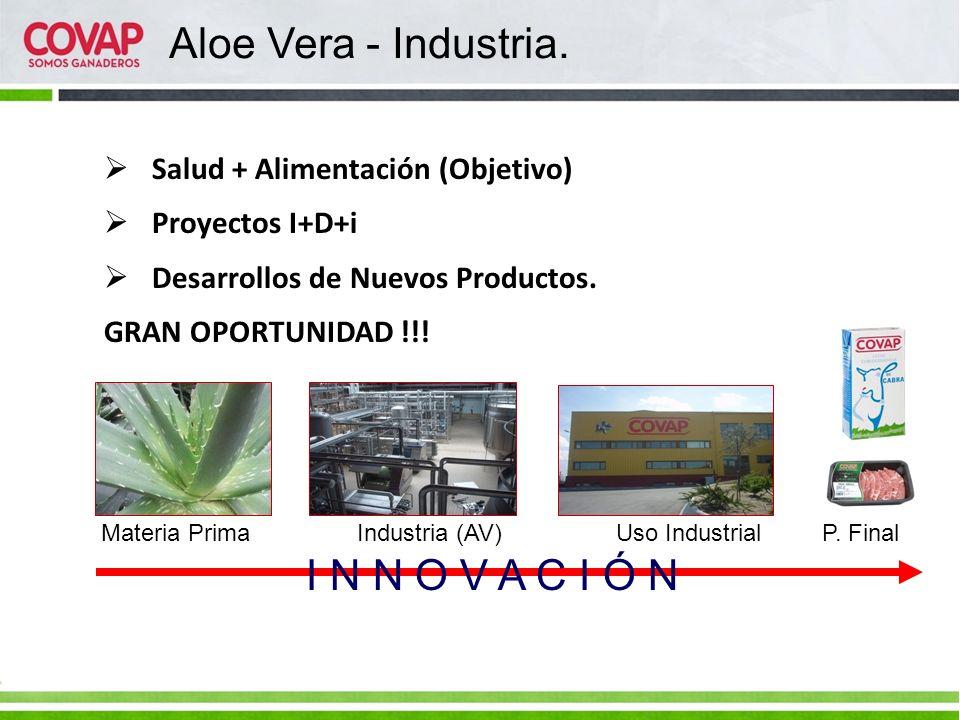 Aloe Vera - Industria. I N N O V A C I Ó N
