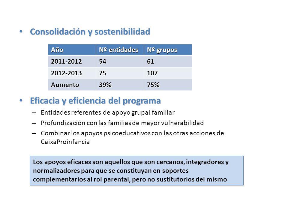 Consolidación y sostenibilidad