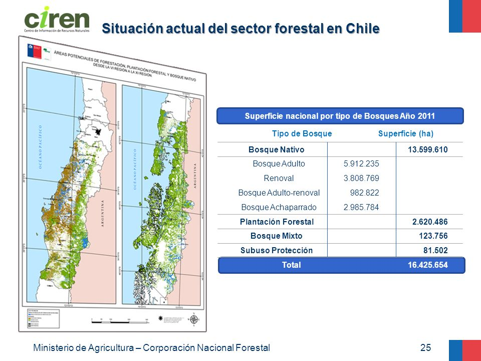Situación actual del sector forestal en Chile