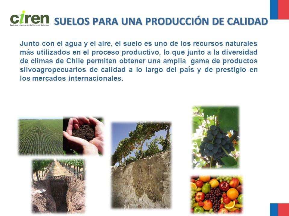 SUELOS PARA UNA PRODUCCIÓN DE CALIDAD