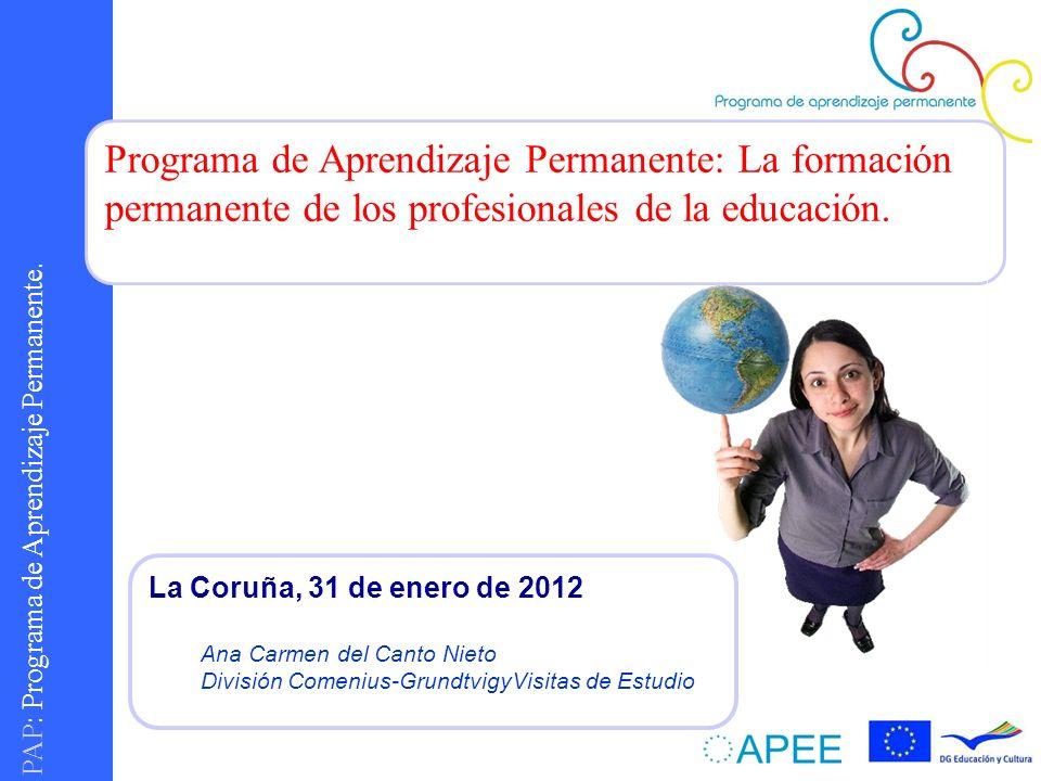 Programa de Aprendizaje Permanente: La formación permanente de los profesionales de la educación.