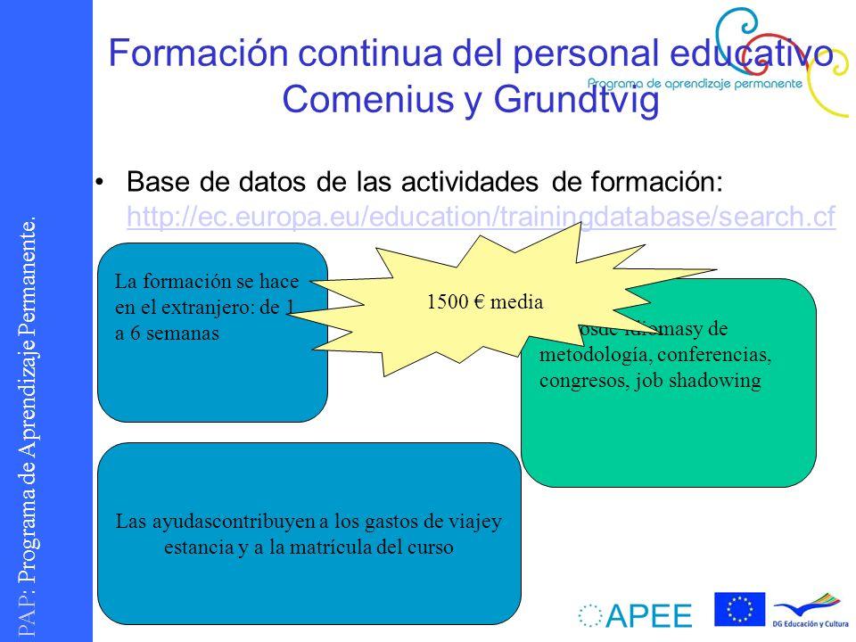 Formación continua del personal educativo Comenius y Grundtvig