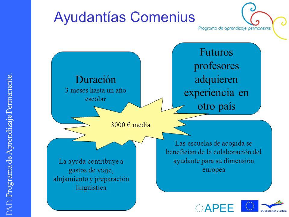 Ayudantías Comenius Futuros profesores adquieren experiencia en otro país. Duración. 3 meses hasta un año escolar.