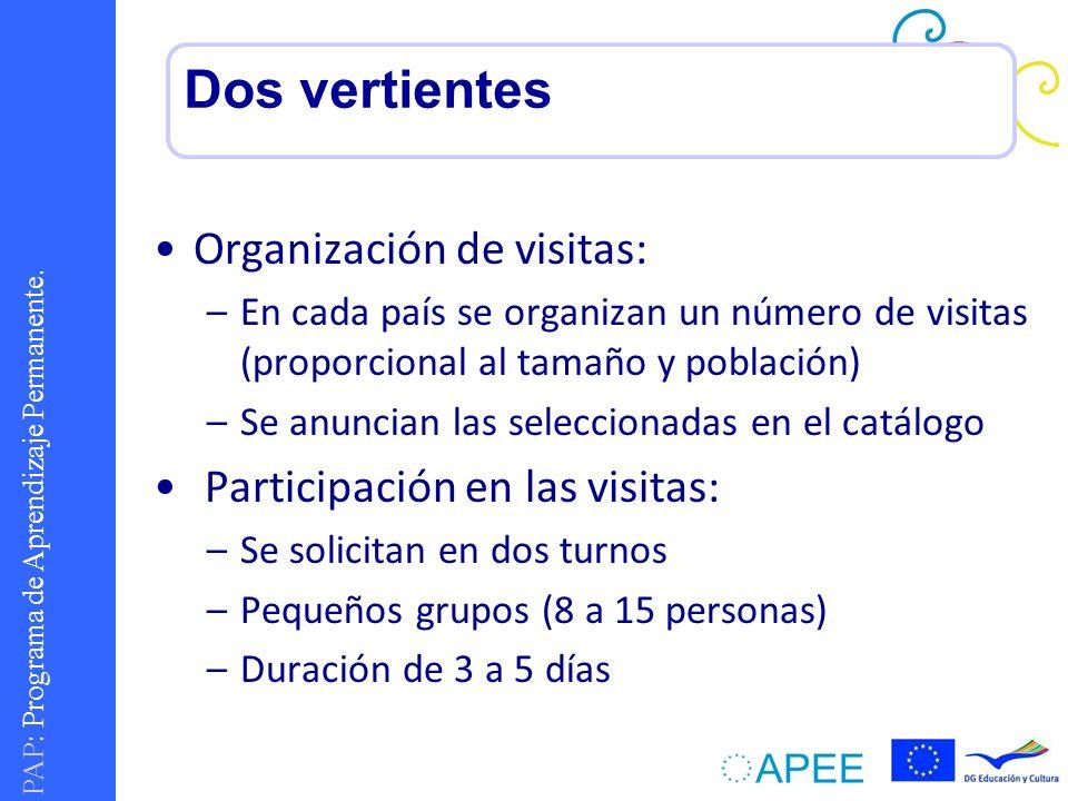 Dos vertientes Organización de visitas: Participación en las visitas: