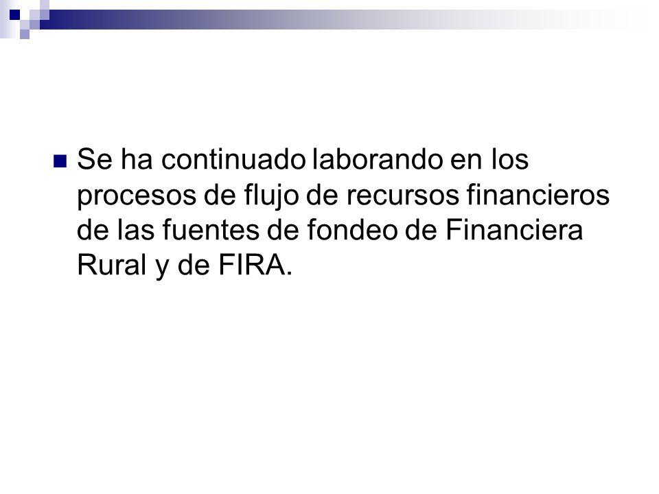 Se ha continuado laborando en los procesos de flujo de recursos financieros de las fuentes de fondeo de Financiera Rural y de FIRA.