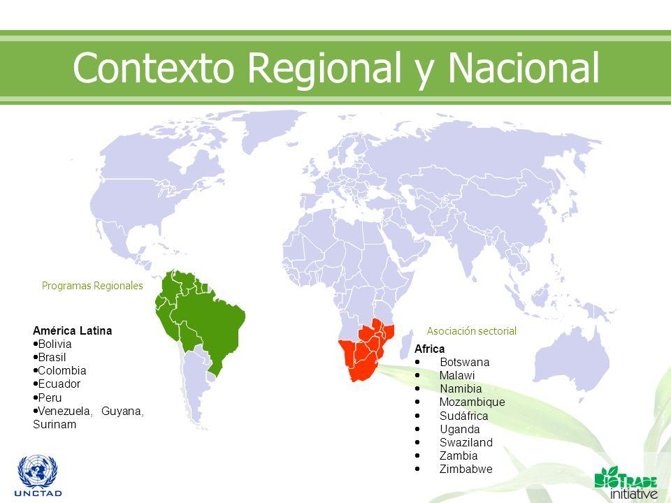 Contexto Regional y Nacional