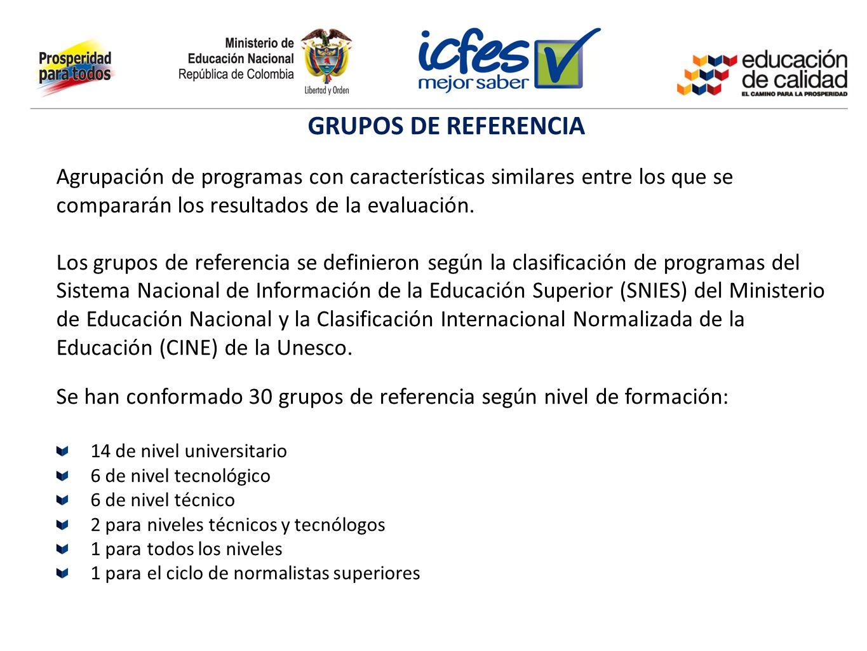 Se han conformado 30 grupos de referencia según nivel de formación: