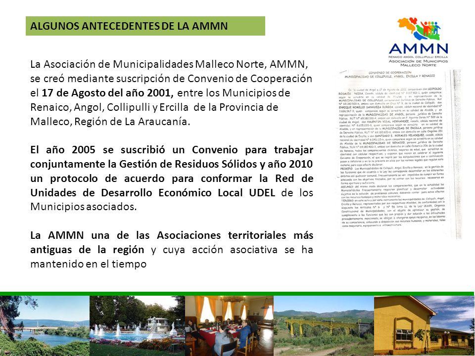 ALGUNOS ANTECEDENTES DE LA AMMN