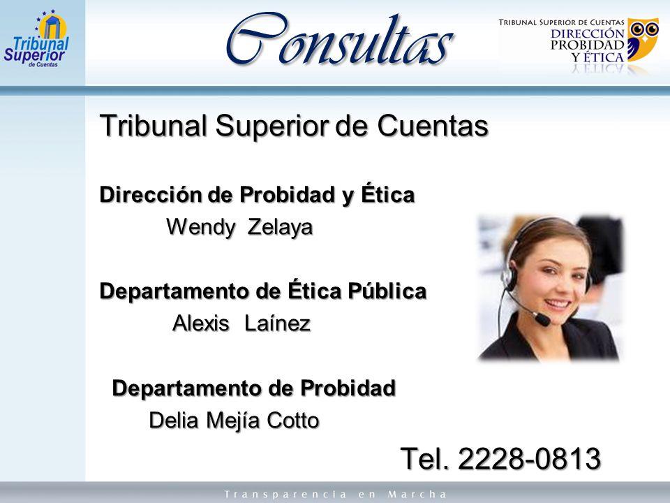 Consultas Tribunal Superior de Cuentas Tel. 2228-0813