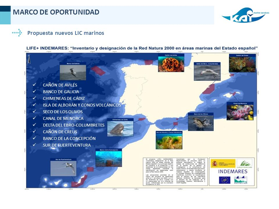 MARCO DE OPORTUNIDAD Propuesta nuevos LIC marinos CAÑÓN DE AVILÉS