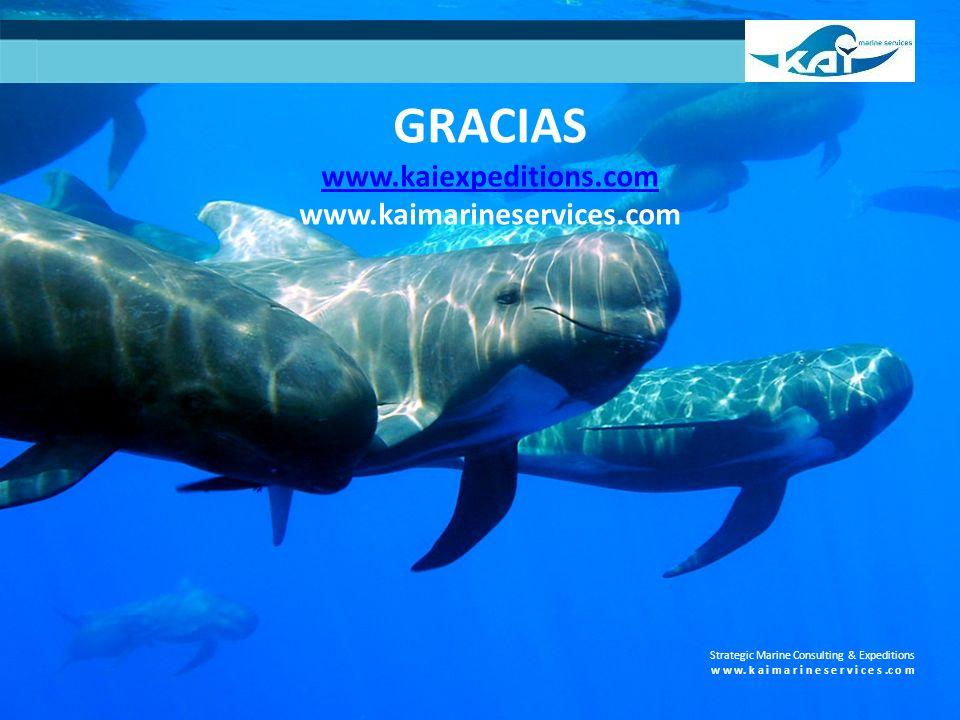 GRACIAS www.kaiexpeditions.com www.kaimarineservices.com