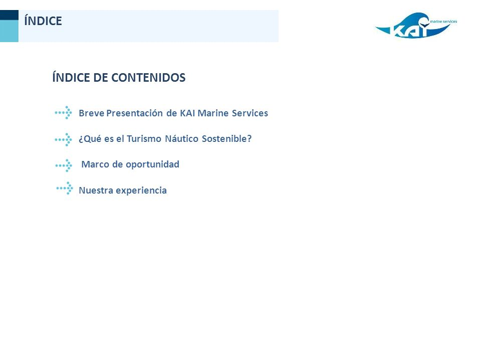 ÍNDICE ÍNDICE DE CONTENIDOS Breve Presentación de KAI Marine Services