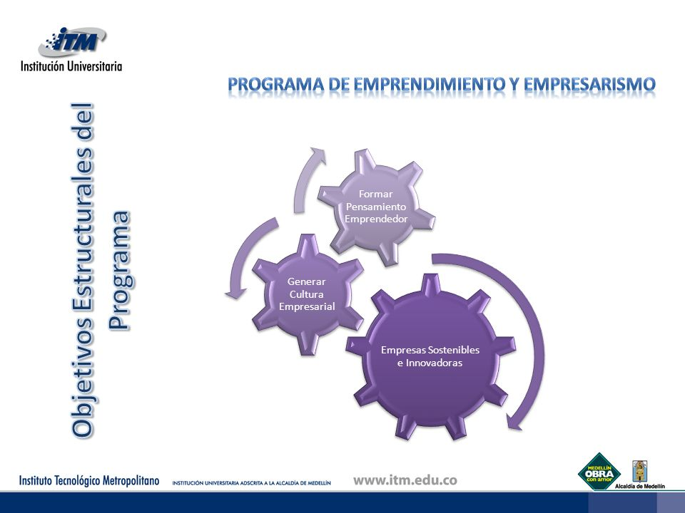 Objetivos Estructurales del Programa