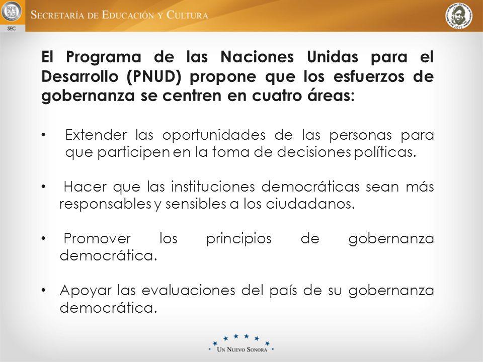 El Programa de las Naciones Unidas para el Desarrollo (PNUD) propone que los esfuerzos de gobernanza se centren en cuatro áreas: