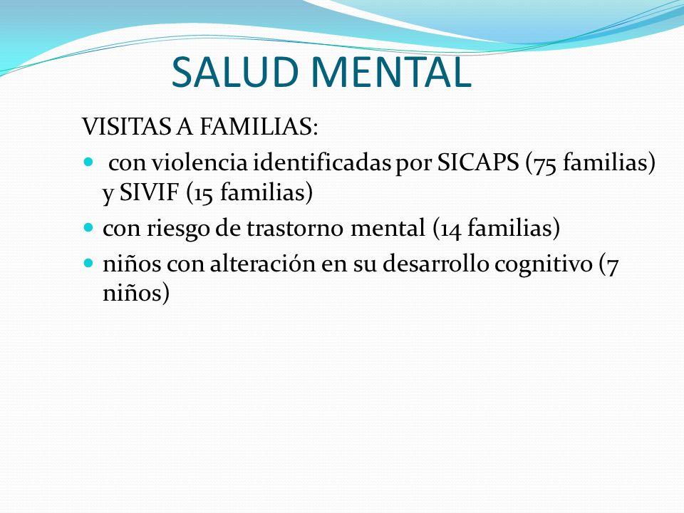 SALUD MENTAL VISITAS A FAMILIAS: