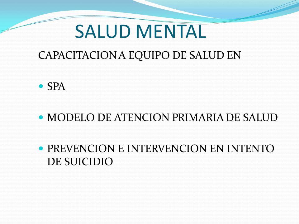 SALUD MENTAL CAPACITACION A EQUIPO DE SALUD EN SPA