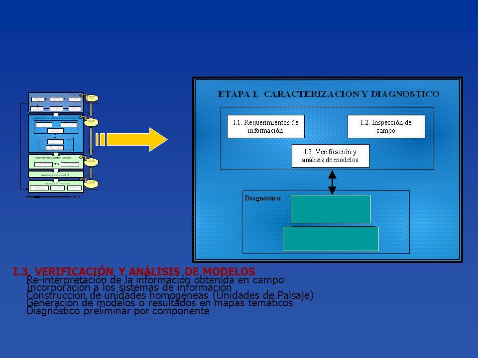 I.3. VERIFICACIÓN Y ANÁLISIS DE MODELOS