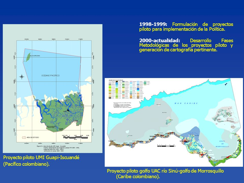 1998-1999: Formulación de proyectos piloto para implementación de la Política.