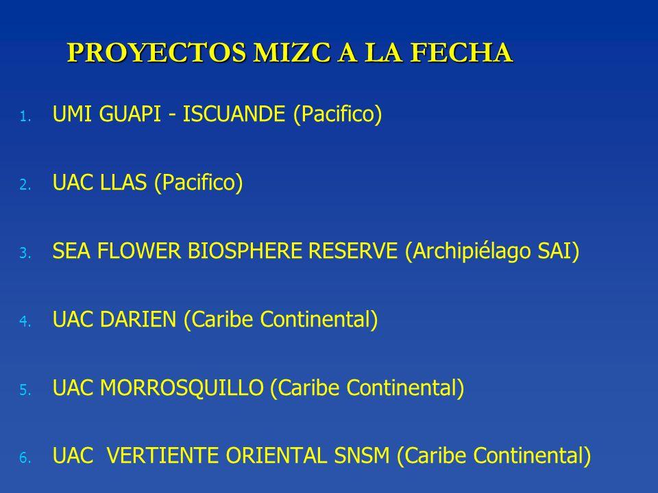 PROYECTOS MIZC A LA FECHA