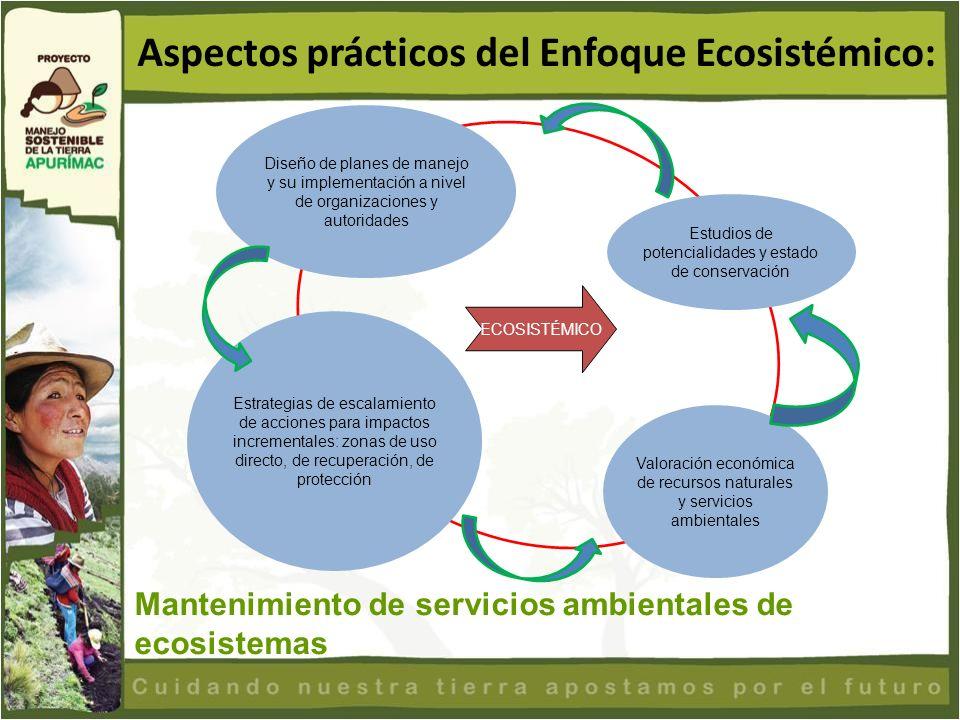 Aspectos prácticos del Enfoque Ecosistémico: