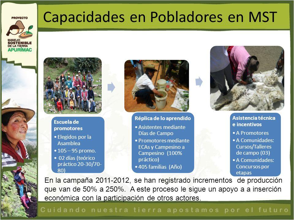 Capacidades en Pobladores en MST