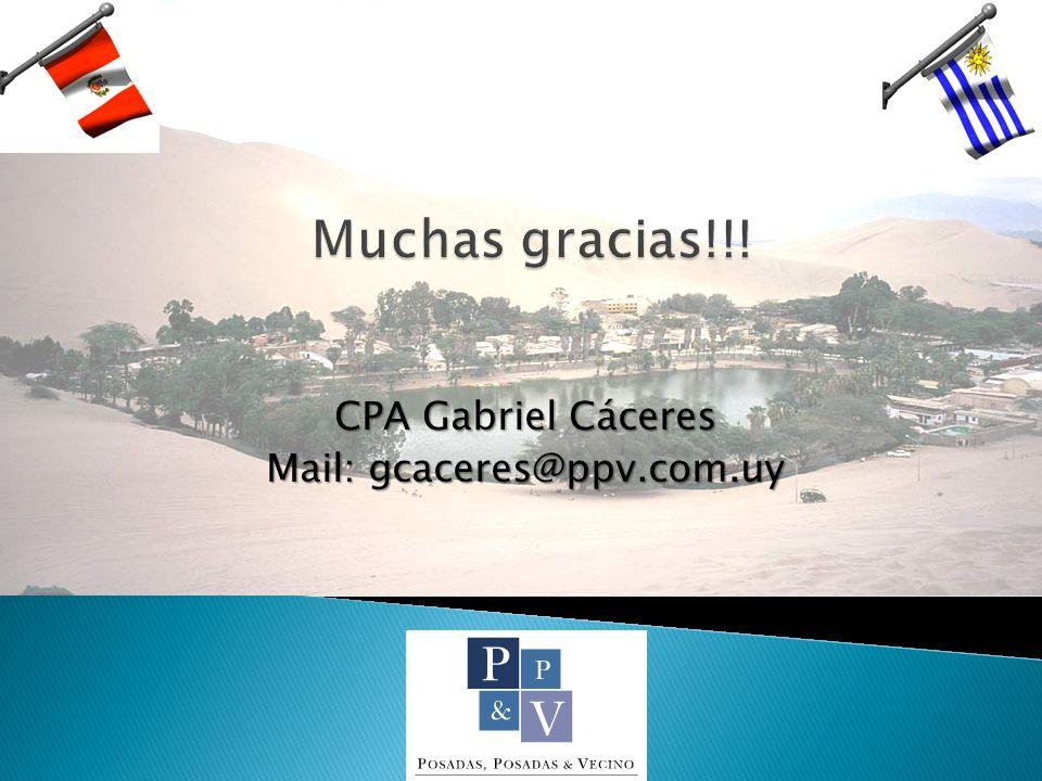 CPA Gabriel Cáceres Mail: gcaceres@ppv.com.uy