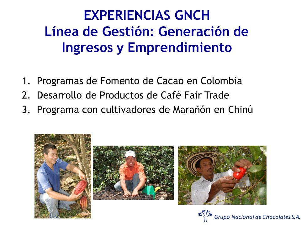 EXPERIENCIAS GNCH Línea de Gestión: Generación de Ingresos y Emprendimiento