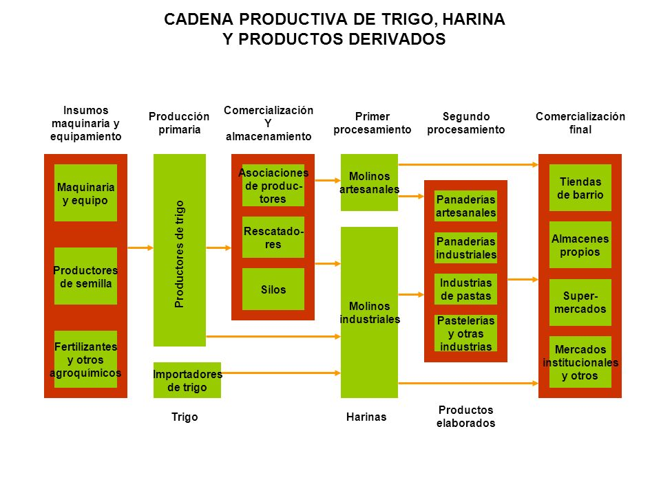 CADENA PRODUCTIVA DE TRIGO, HARINA Y PRODUCTOS DERIVADOS