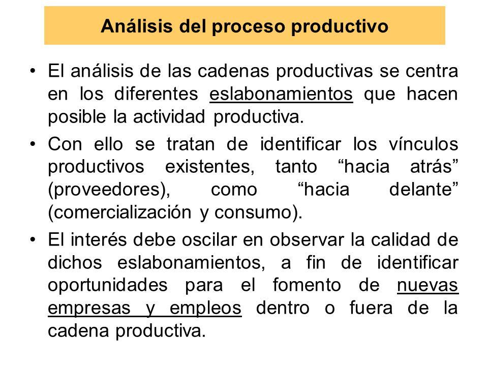 Análisis del proceso productivo