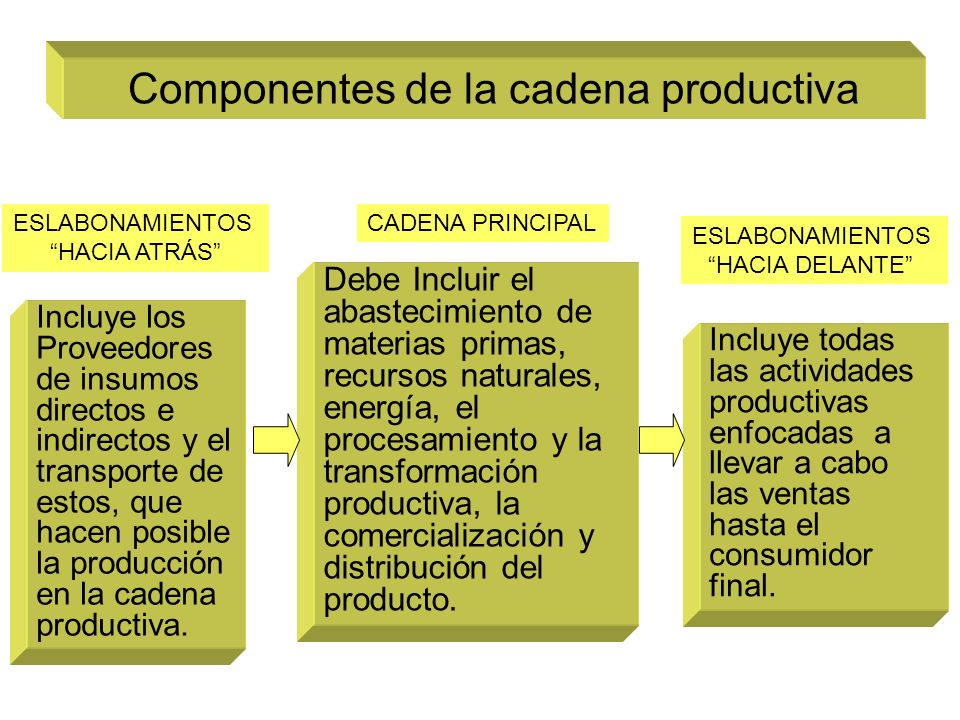 Componentes de la cadena productiva