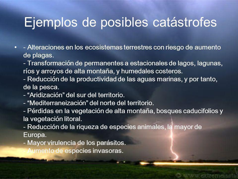 Ejemplos de posibles catástrofes