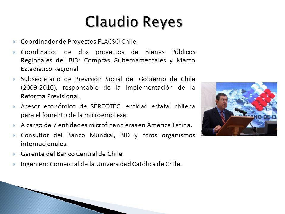 Claudio Reyes Coordinador de Proyectos FLACSO Chile