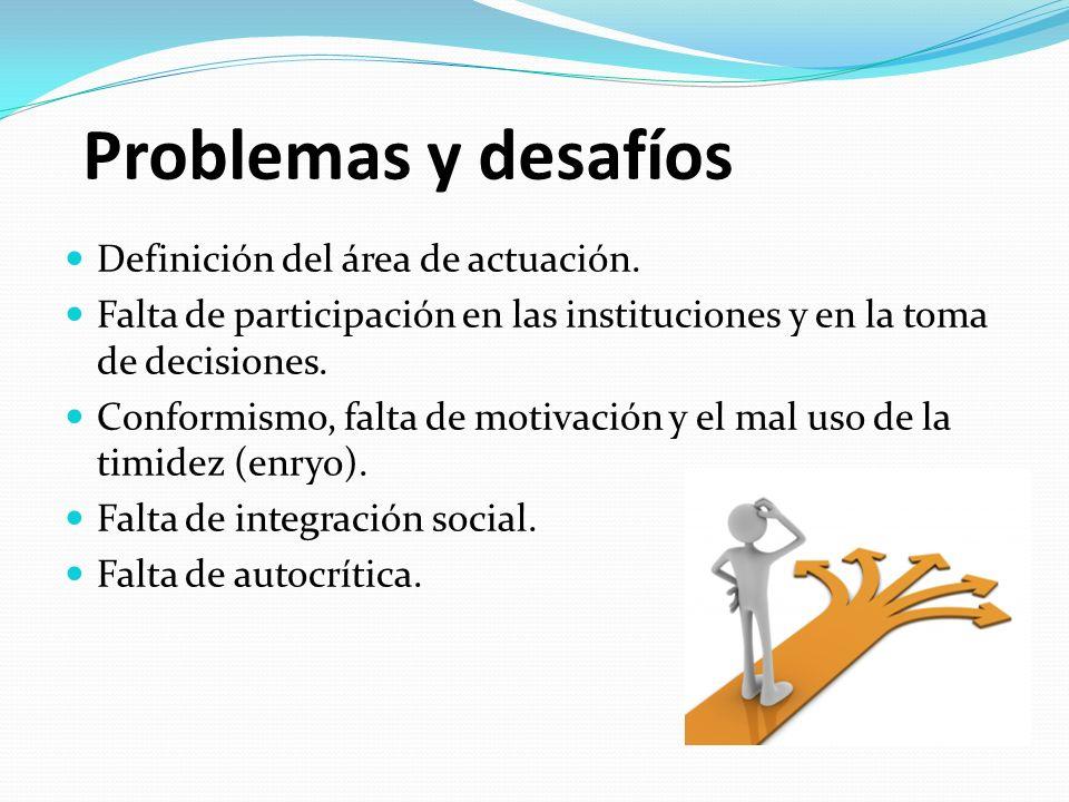 Problemas y desafíos Definición del área de actuación.
