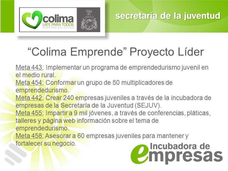 Colima Emprende Proyecto Líder